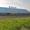 Авиаперевозки грузов в Омск из Москвы срочные от 1 кг за 12-24 часа - Изображение #2, Объявление #667615