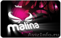 Клубная карта Malina
