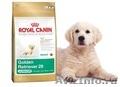 Корма Royal canin и Pro plan с доставкой на дом