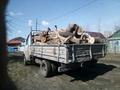 Вывоз веток Вывоз пней Вывоз старой мебели и хлама в Омске